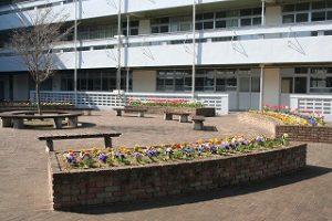 校庭の写真